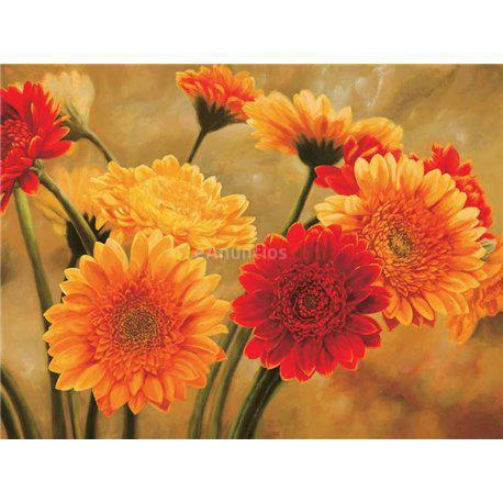 laminas para cuadros de flores modernos gerbere nel sole