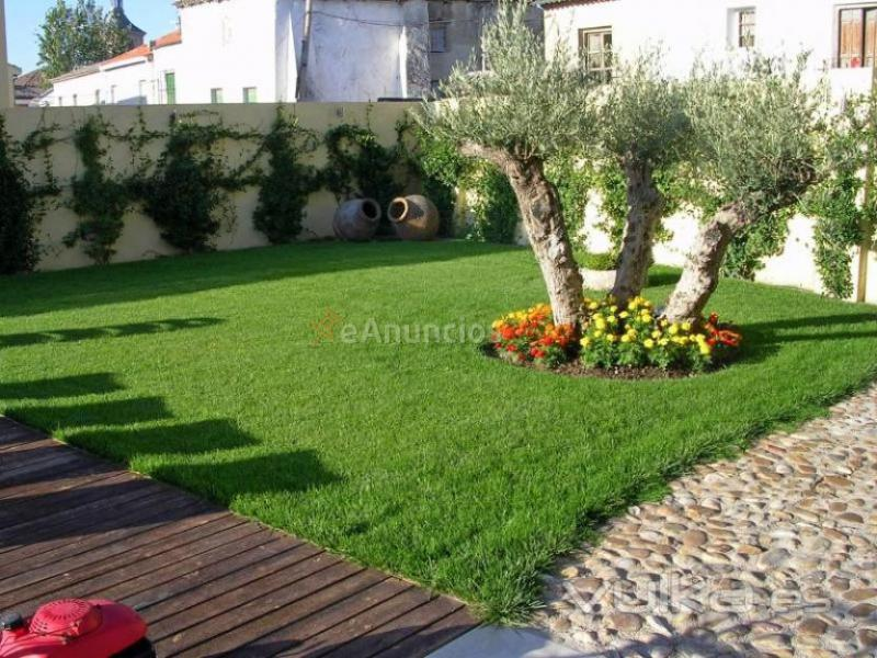 jardines de lujo a precios economicos (1035526) - eAnuncios.com